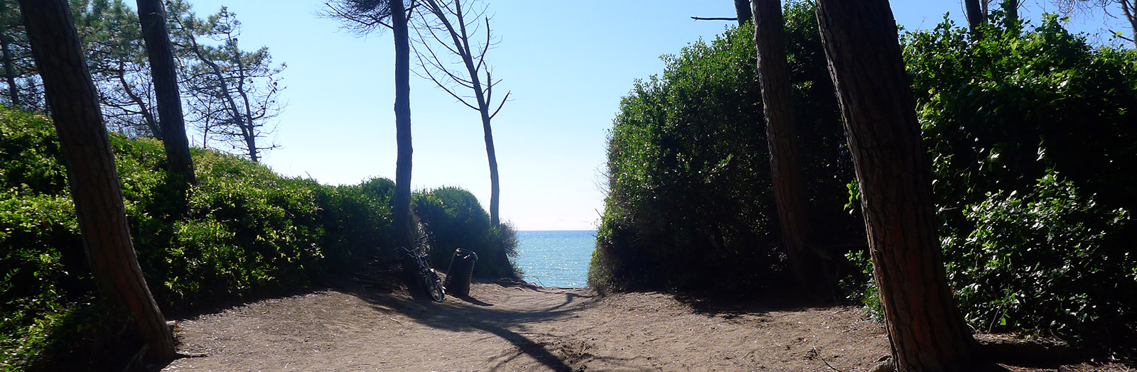 Beach view in Cecina Mare, Tuscany, 2014